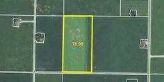AUCTION - Thursday, December 1 at 10 a.m. in Buffalo Center, Iowa. 80 acres with 78.98 crop acres. http://www.landbluebook.com/ViewLandDetails.aspx?txtLandId1=4a72e24c-099b-40e5-9593-1b747a404fa4
