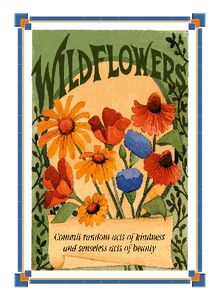 wildflower seeds for sale $0.50 each