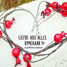 Liefde Afrikaans Quotes, Religious Quotes, Staying Positive, Me Quotes, Bible, Captions, Verses, Fangirl, Friendship