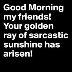 Good Morning my friends!  Your golden ray of sarcastic sunshine has arisen!