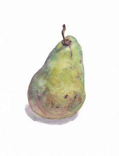 Yakusheva Marina  Original botanical watercolor with a pear. Size: 8.5 x 6.5 = 21.5 x 16.5 (cm)
