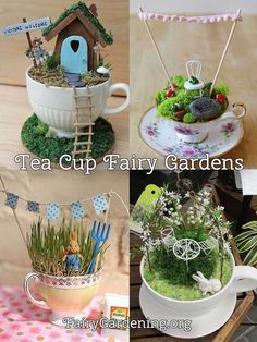 Teacup Fairy Gardens … - Jeanette's Garden #minigardens