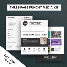 32 Best Media Kit Design Examples Images Media Kit Template