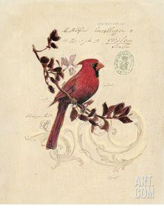 Filigree Cardinal Print by Chad Barrett at Art.com