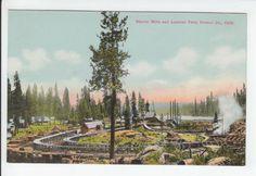 Shaver Mills Lumber Yard Fresno California CA Old Postcard Vintage Logging Mill