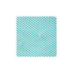 Coton Pépin azur