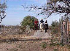 Cabalgatas en Pueblo Benegas.