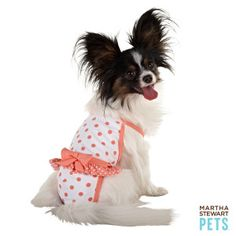 How adorable is this #MarthaStewartPets one piece swim suit? Available at #PetSmart.