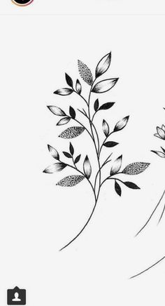 Dot work – World of Flowers Tattoo Sketches, Tattoo Drawings, Art Sketches, Flower Tattoos, Leaf Tattoos, Small Tattoos, Tattoo Femeninos, Floral Drawing, Flower Doodles