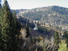easy utah hike - snowbird barrier free trail
