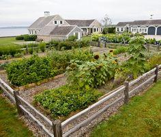 Edible kitchen garden in Rhode Island