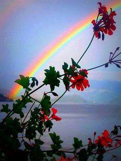Beautiful rainbow over Lake Como, Italy Rainbow Magic, Rainbow Sky, Love Rainbow, Over The Rainbow, Rainbow Colors, Rainbow Promise, Comer See, Rainbow Photography, Rainbow Connection