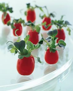 Hollowed grape tomatoes become diminutive salad bowls, holding a few leaves of lightly dressed greens called tatsoi.