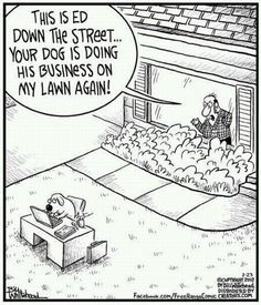 I just hate it when dogs do their business on my lawn...buying stocks and stuff...
