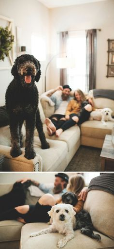 We can't get enough of this dreamy, casual at-home family shoot with Shea and her hubs along with their three pups! Group Family Pictures, First Home Pictures, Indoor Family Photography, Lifestyle Photography, Family Posing, Family Portraits, Home Photo Shoots, Dalian, How To Pose