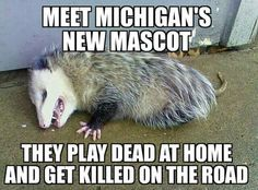 Meet Michigan's new mascot. They played dead at home and get killed on the road.