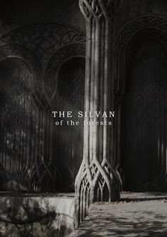 THE SILVAN ELVES of Eryn Galen and Lothlórien »The feasting people were Wood-elves, of course. These are not wicked folk. If they have a fault it is distrust of strangers. Though their magic was... Tolkien Elvish, Lotr, Thranduil, Legolas, Narnia, Silvan Elves, Woodland Elf, Wood Elf, Kili