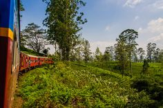 World`s Most Beautiful Train Trip? Sri Lanka Train Travel -NerdNomads