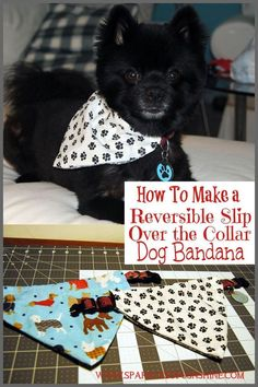 Dogs Pamper your pooch today! Learn how to make a reversible over the collar dog bandana at Sparkles of Sunshine. - Pamper your pooch today! Learn how to make a reversible over the collar dog bandana at Sparkles of Sunshine. Dog Collar Bandana, Diy Dog Collar, Bandana For Dogs, Puppy Bandana, Cute Dog Collars, Cat Bandana, Tattoo Pitbull, Dog Crafts, Dog Items