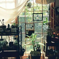 LIVE WITH GREEN/棚/散財部/和室/障子のインテリア実例 - 2015-08-22 11:34:09 | RoomClip(ルームクリップ)