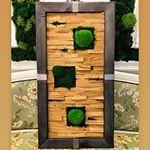 Вертикальное озеленение (@greenmoss48) • Фото и видео в Instagram Bird, Outdoor Decor, Home Decor, Decoration Home, Room Decor, Birds, Home Interior Design, Home Decoration, Interior Design
