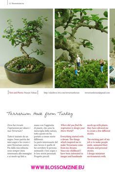 IDEA per Terrarium onirici e micro mondi da sogno Terrarium, World, Plants, Design, Terrariums, The World, Plant, Planets