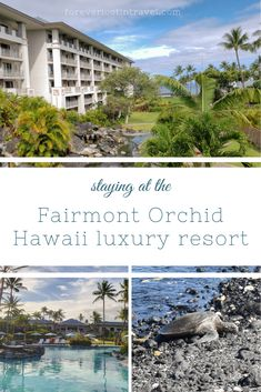 Find out all there is to know about the luxury Fairmont Orchid resort on the Big Island of Hawaii, the ultimate stay in paradise Hawaii Vacation, Vacation Spots, Maui Travel, Travel Destinations, Solo Travel, Fairmont Orchid, Maui Hotels, Hawaiian Sunset