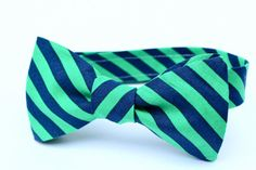 Hey, I found this really awesome Etsy listing at https://www.etsy.com/listing/118953215/boys-bow-tie-navy-and-green-stripe