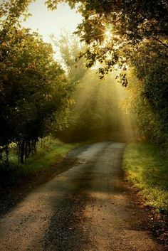 Country road. Perfect for a long drive