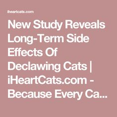 New Study Reveals Long-Term Side Effects Of Declawing Cats | iHeartCats.com - Because Every Cat Matters ™