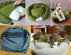 Pet beds with just a few stitches to and old sweater or sweatshirt and pillow stuffing.