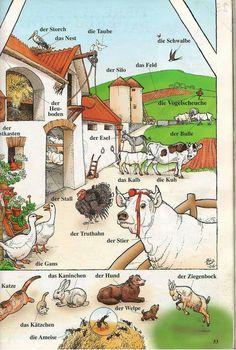 Die Bauernhof Tiere
