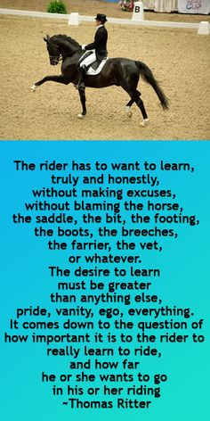 Love this quote. Horse back riding is a humbling hobby.