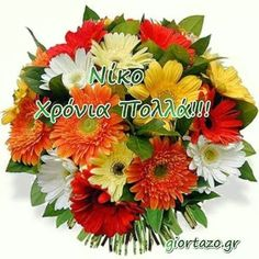 Name Day, Cross Stitch, Happy Birthday, Names, Plants, Happy Brithday, Punto De Cruz, Saint Name Day, Seed Stitch