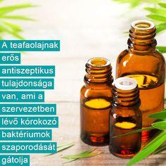 Doterra, Aloe Vera, Cucumber, Healthy Life, Medical, Food, Sport, Healthy Living, Deporte