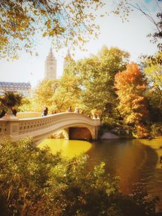 New York City - Autumn - Central Park's Most Beautiful Views - Bow Bridge with Fall Foliage