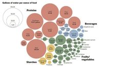 A Chart Showing You How Much Water It Takes To Grow All The Food You Eat