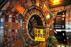 The CERN thingy which smashed the thingies which revealed the Higgs Bison!