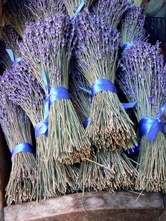lavender for sale by KarenMarleneLarsen, via Flickr