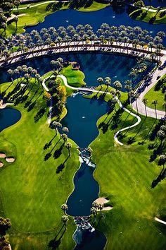 Marriott's Desert Springs Palms Course**.