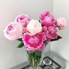 My beautiful peonies  #peony #peonies #peonybouquet #flowers #fashion #narmina #etsyshop #etsy #etsygifts #etsyseller #toronto #canada #loves