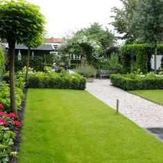 gazon in groene tuin