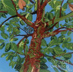 Arbutus Tree Painting