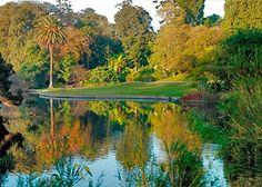 Royal Botanic Gardens ~ #Melbourne #Australia