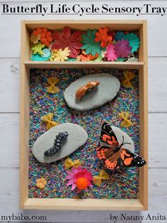 Butterfly Life Cycle Sensory Tray | Nanny Anita | My Baba Play Therapy Activities, School Age Activities, Playdough Activities, Sensory Activities Toddlers, Art Activities For Kids, Infant Activities, Sensory Tools, Sensory Bins, Rainbow Sensory Bottles
