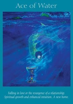Angel Readings, Psychic Readings, Free Tarot Cards, Angel Guide, Oracle Tarot, Angel Cards, Card Reading, Doreen Virtue, Humor
