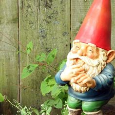 An adult garden gnome costume have a fun effect for any occasion. Choose the right adult garden gnome costume and the party can start! Funny Garden Gnomes, Yard Gnomes, Gnome Garden, Garden Crafts, Garden Art, Twig Crafts, Cement Crafts, Garden Projects, Garden Ideas
