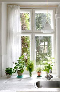 Your kitchen window is the perfect place to create a little herb garden. Very pretty too!