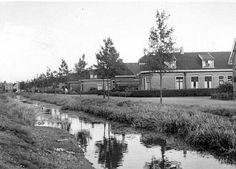 Wijnhorsterstraat Leeuwarden (jaartal: 1950 tot 1960) - Foto's SERC