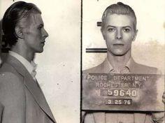 """Hannah Parry per """"Daily Mail""""        VIDEO """"BOWIE A PROCESSO""""                  iggy e david     Era il 21 marzo 1976, David Bowie suonava al 'Community War Memorial' di Rochester, New York, e ciò che ne ne seguì fa parte della"""